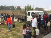 Voluntários pelo ambiente