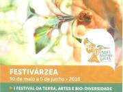 Quinta do Conde tem Festival da Terra