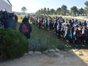 Escuteiros plantaram 300 árvores na Várzea