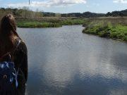 Quinta do Conde estuda construção de piscina biológica